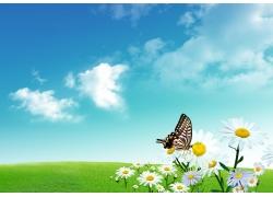 春天时的美丽风景图片