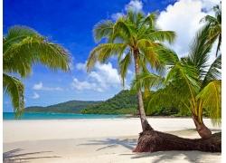海岸自然风景摄影图片