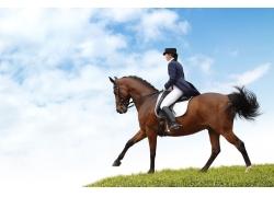 骑马的美女高清图片