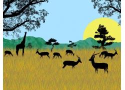 日出非洲动物矢量素材