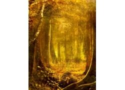 秋日美丽风景图