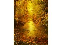 秋日美丽风景图片