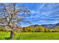 蓝天白云草地风景图片