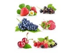 水果高清图片素材