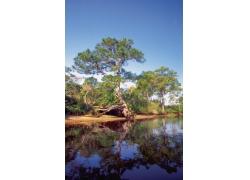 自然风景山水画