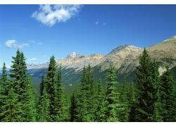 自然景观摄影图片