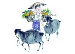 放羊的女人