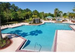 游泳池摄影图片