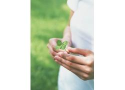 手拿四叶草的女性