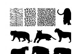 动物剪影与皮毛图片