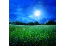美丽大自然风景图片