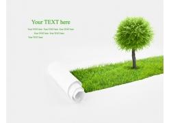 宣传绿色环保卷纸