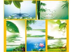 绿叶水滴 绿色背景