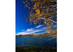 湖泊风景摄影图片