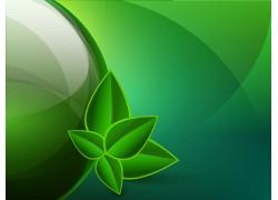 绿色背景 绿叶背景