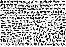 矢量动物剪影素材图片