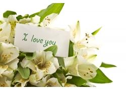 美丽的康乃馨花束