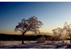 自然风光摄影素材