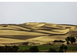 沙漠背景素材