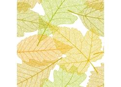 叶子纹理背景