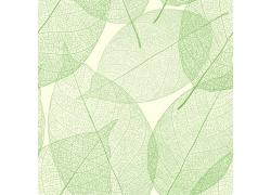 绿色叶子纹理设计