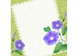 鲜花信纸背景设计
