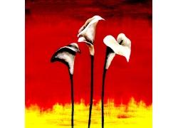 油画鲜花无框画