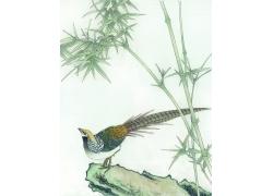 竹子与小鸟插画