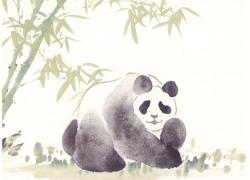 竹子与熊猫插画
