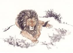 手绘狮子素材