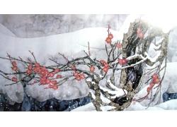 冬天梅花国画