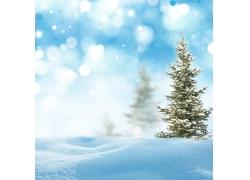 梦幻光斑与雪地树木