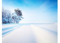 冬天风光摄影