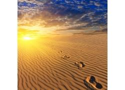 沙漠中的脚印