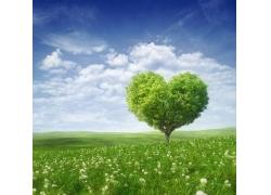 心形环保树木