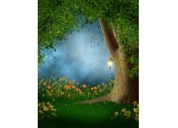 美丽大树与鲜花草地风景