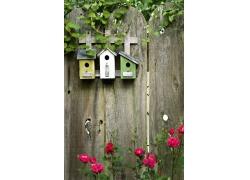 栅栏上的鸟巢