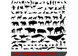 动物剪影设计图片