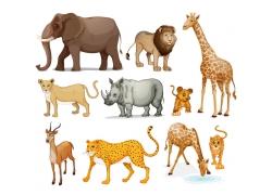 卡通动物图片图片