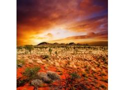 美丽沙漠风景