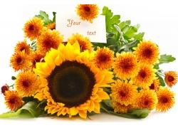 向日葵和雏菊花束图片
