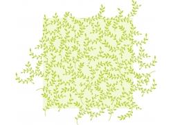 白色背景绿叶枝条图案