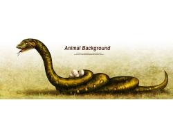 卡通蛇插画图片