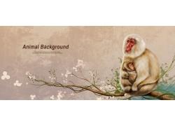 卡通猴子插画图片
