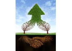 两棵树汇成的绿色箭头