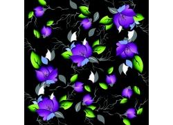 黑色背景上的紫色花朵绿叶素材