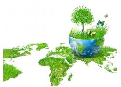 生态环保与蝴蝶