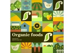 农场蔬菜水果卡通画图片