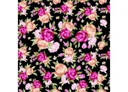 黑色背景矢量花朵图案