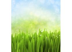 绿色环保背景素材